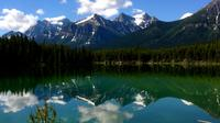 5-Day Rocky Mountains Summer Premium Tour from Vancouver