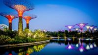 """Singapore Gardens By The Bay Admission Ticket"""""""