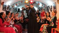 Granada Flamenco Show in Sacromonte and Walking Tour of Albaicin - Granada, Spain