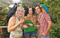 Kuranda Koala Gardens and Birdworld Admission Tickets, Cairns Family Attractions