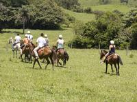 8-Day Best of Northwest Costa Rica from San Jose: Arenal Volcano National Park, Alajuela and Guanacaste