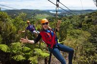 Waiheke Island Exploration and Zipline Day Trip from Auckland, Auckland CBD Natural Activities & Attractions