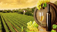 Tuscany Countryside Full-Day Tour from Rome with Wine Tastings