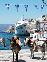 Hydra, Poros and Egina Luxury Cruise from Athens