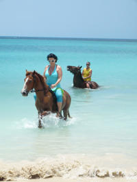 Fort James and Beach Horseback Ride from St John's