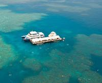 Great Barrier Reef Cruise from Cairns, Cairns Tours and Sightseeing