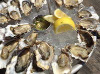 Marin County Oyster Farm Tour and Tasting Picture