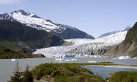 Viator Exclusive: Mendenhall Glacier, Whale-Watching Cruise and Juneau City Tour