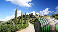 Tour of the Chianti Region and Brunello Wine Tasting from San Gimignano