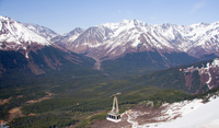 Anchorage Gold-Mining Tour with Optional Mt Alyeska Experience