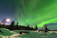 Northern Lights Overnight Tour with Dog Sledding