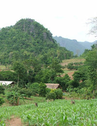 4-Night Experience in Chiang Mai: Palong Villages Stay and Chiang Dao Trek