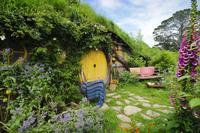 Tauranga Shore Excursion: Lord of the Rings Hobbiton Movie Set Tour, Tauranga Tours and Sightseeing