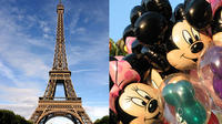 Private transfer from Disneyland to Paris Charles de Gaulle airport