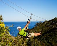 Catalina Island Day Trip from Anaheim or Los Angeles with Optional Zipline Eco-Tour
