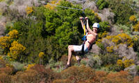 Catalina Island Zipline Eco-Tour from Los Angeles