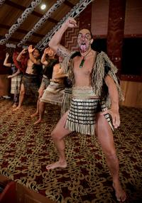 Te Puia Maori Arts and Crafts Institute with Optional Cultural Performance