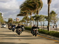 Harley-Davidson Rental in Miami Picture