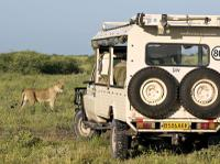 Chobe National Park Day Trip: Game Drive and River Cruise