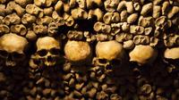 Skip-the-Line Paris Catacombs Admission Ticket and Audio Guide