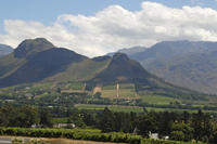 Private Western Cape and Swartland Wine Route Day Trip from Cape Town Including Riebeek Kasteel
