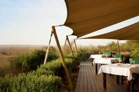 Conservation Drive With Refreshments at Al Maha Desert Resort and Transport from Dubai