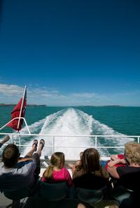 Waiheke Island Tour from Auckland