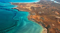 Half-Day Abrolhos Island Discovery Tour from Kalbarri