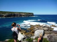 Royal National Park Day Trip from Sydney