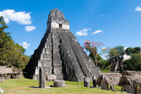 Tikal Day Trip from San Ignacio image 1
