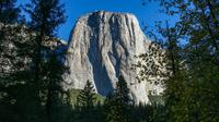Yosemite One Day Tour by Train and Bus 5 hours in the park Early Bird