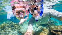 Curacao Shore Excursion: Snorkel Adventure