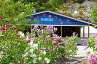 Skagway Shore Excursion: Jewell Gardens Tour and Glassblowing Demonstration