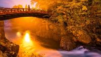 Private tour Nikko - The Jewel tucked in the Japanese Alps