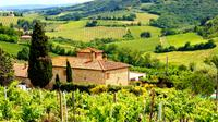 Florence à Greve in Chianti Tour with Experience Wine Tasting - Florence -