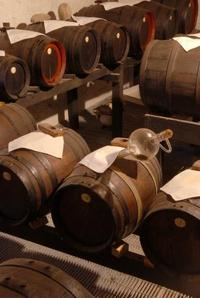 Small-Group Food and Wine Tour from Bologna Including Lunch