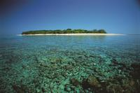 3-Day Great Barrier Reef Tour: Lady Musgrave Island and the Town of 1770