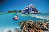 3-Day Southern Great Barrier Reef Tour Including Lady Musgrave Island