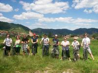 Wachau Valley Winery Small-Group Bike Tour from Vienna
