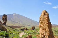 Tenerife Shore Excursion: Private Teide National Park Day Trip