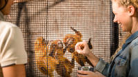 Adelaide Zoo Behind the Scenes Experience: Meet the Primates