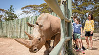 Rhino Interactive and a day at Monarto Zoo