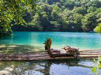 Frenchman's Cove, Blue Lagoon and Rio Grande Day Trip from Montego Bay or Ocho Rios