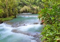 Montego Bay Shore Excursion: Dunn\'s River Falls
