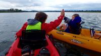 All Encompassed Canberra Small-Group E-Bike and Kayak Tour