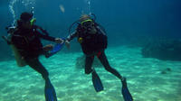 Full-day Scuba Diving at Cham Island from Hoi An