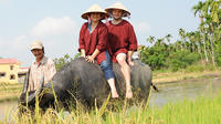 Half-Day Rice Paddy Experience from Hoi An