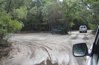 2-Day Fraser Island 4WD Tag-Along Tour from Hervey Bay