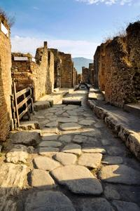 Pompeii and Wine Tasting Experience from Sorrento