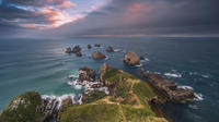Private Tour: Dunedin to the Catlins, Dunedin Tours and Sightseeing